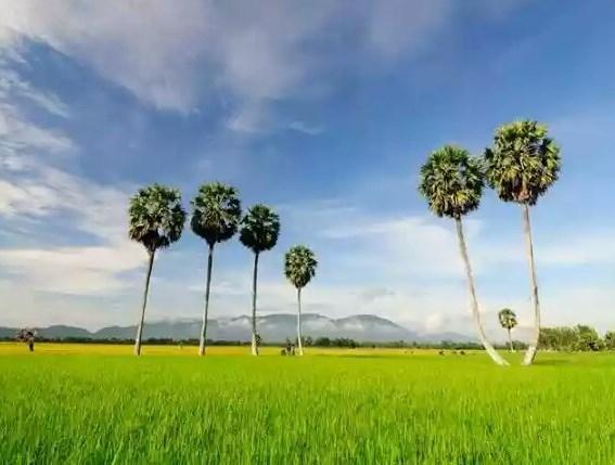 Northern Vietnam Excursion