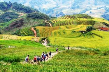 Sapa Trekking tour