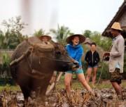 Luang Prabang living land